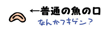 fish_kuchi.jpg